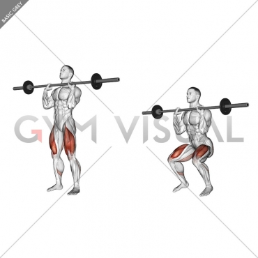 Barbell Front Chest Squat