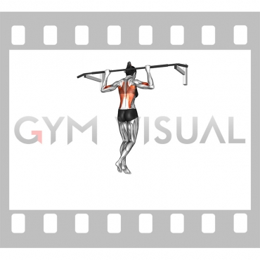 Wide-Grip Rear Pull-Up (female)