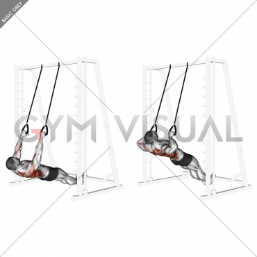 Inverted Row with Straps