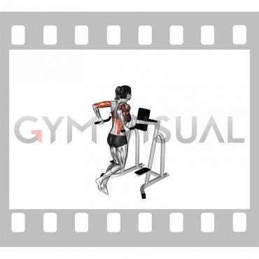 Triceps Dip (female)