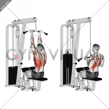 Cable Reverse-grip Straight Back Seated High Row