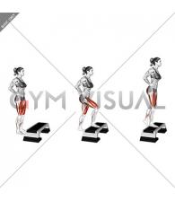 Single Leg Step Up (female)