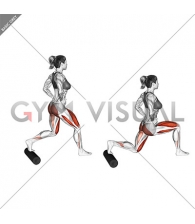 Split Squat with Roll
