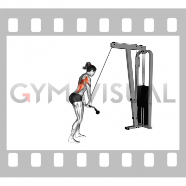 Cable straight arm pulldown (VERSION 2) (female)