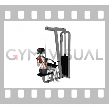 Cable Reverse Grip Pulldown (female)