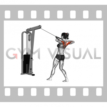 Cable Standing Rear Delt Row (with rope) (female)
