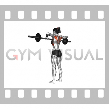 Barbell Wide Grip Upright Row (female)
