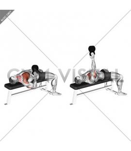 Kettlebell Bottom Up One Arm Bench Press