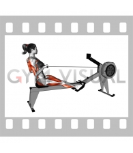 Rowing (with rowing machine) (female)