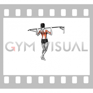 Wide-Grip Pull-Up (female)