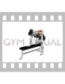 Dumbbell Rear Delt Row (female)