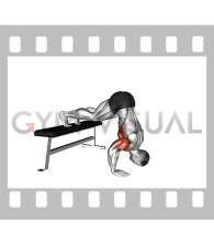Pike Push-up (on Bench) (VERSION 2)