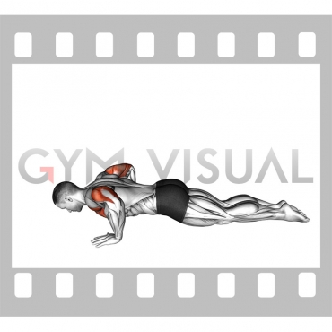 Kneeling Push-up (male)