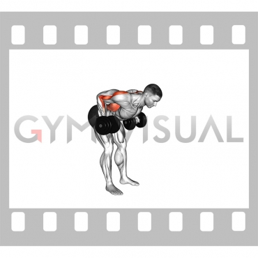 Dumbbell Palm Rotational Bent-Over Row