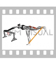 Resistance Band One Leg Kickback (Bent Position) (female)