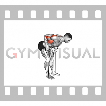 Band bent-over row (male)