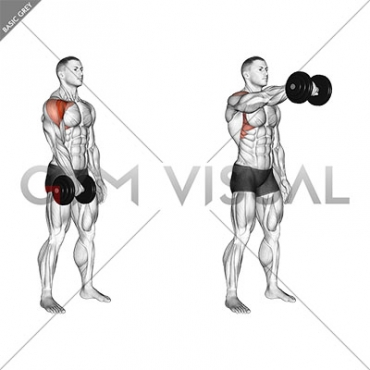 Dumbbell One Arm Front Raise