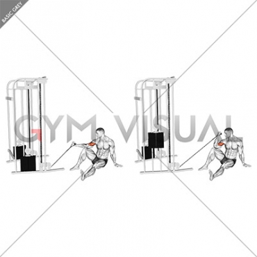 Cable Seated Floor One Arm Concentration Curl