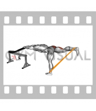 Resistance Band One Leg Kickback (Bent Position) (male)