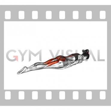 Swimmer Kicks (female)
