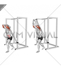 Band overhead triceps extension (male)