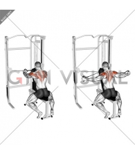 Cable Seated Rear Delt Fly with Chest Support