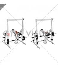Smith Single Arm Bent-Over Row