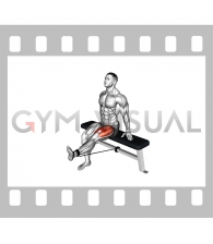 Band Seated Leg Extension (male)