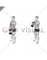 Dumbbell Standing Single Spider Curl