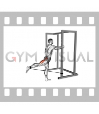 Band Standing Hip Extension (male)