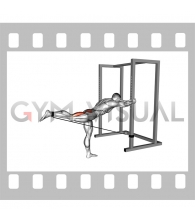 Band Bent-over Hip Extension (male)