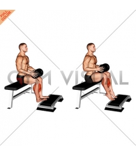 Weighted Seated Calf Raise