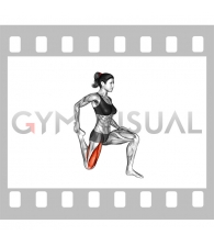 Quadriceps Stretch (female)