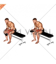 Weighted Seated Reverse Wrist Curl