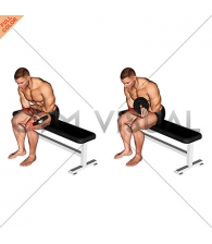 Weighted Seated One Arm Wrist Curl