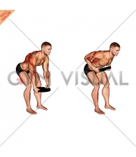 Weighted Plate Bent Over Row