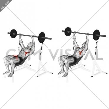 Barbell Incline Shoulder Raise