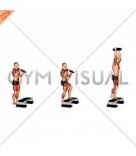 Weighted Overhead Press Step Up