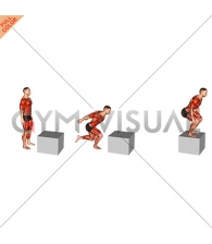 1 to 2 Jump Box (male)