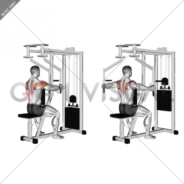 Lever Seated Reverse Fly (parallel grip)