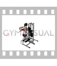 Assisted Triceps Dip (kneeling) (female)