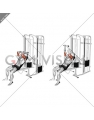 Cable Incline Skull Crusher