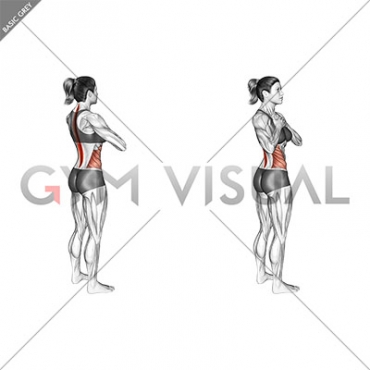 Standing Back Rotation Stretch (female)