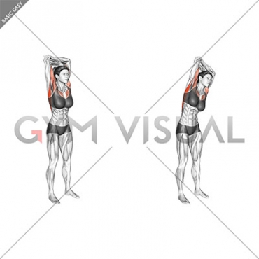 Standing reach up back rotation stretch (female)