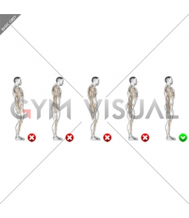 Standing Pose (WRONG-RIGHT) Side POV