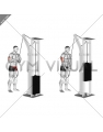 Cable Triceps Pushdown (V-bar) (VERSION 2)