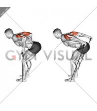 Band Triceps Kickback