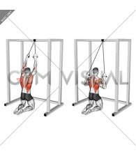 Band Knelling Lat Pulldown