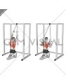 Band Kneeling Lat Pulldown