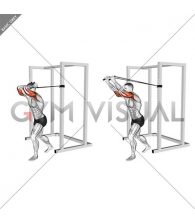 Band overhead triceps extension (VERSION 2) (male)